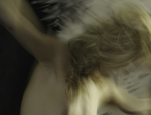Akt, Nude-art