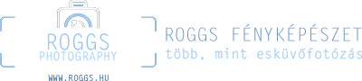 Roggs artography Logo
